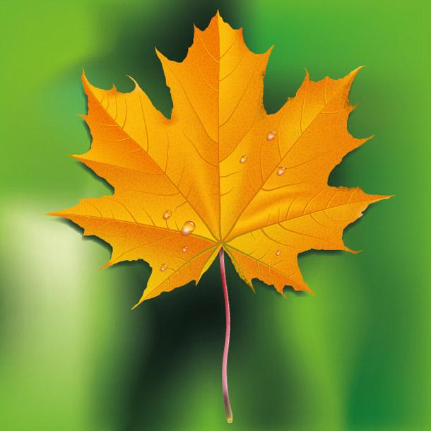 Podzimní list